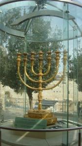 Jerusalem - Olive 2
