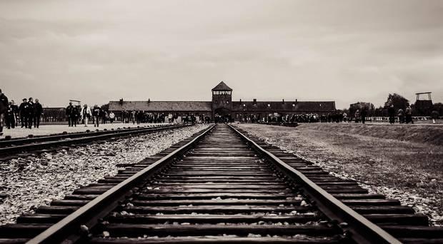 David Campbell Bangor Auschwitz