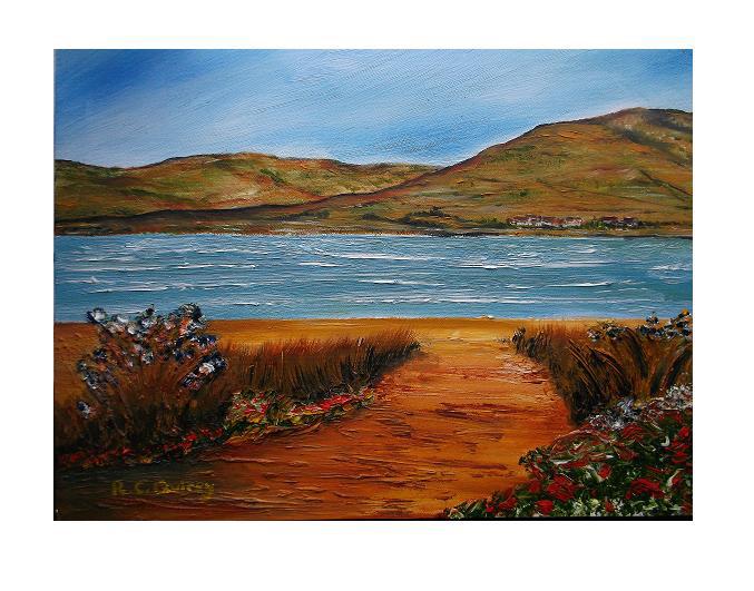 Rachel Quirey Israel landscape